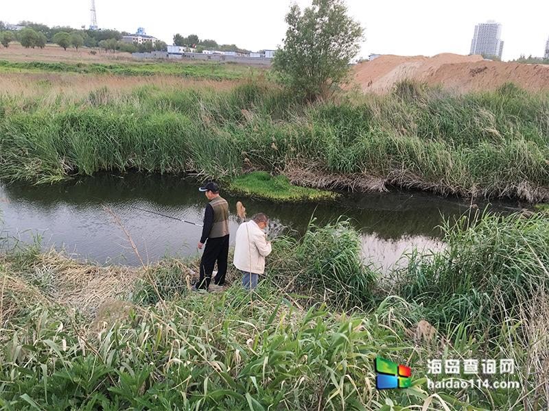 东戴河佳源渔家院