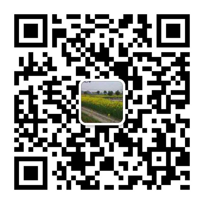 獐子岛有洋红民宿微信二维码