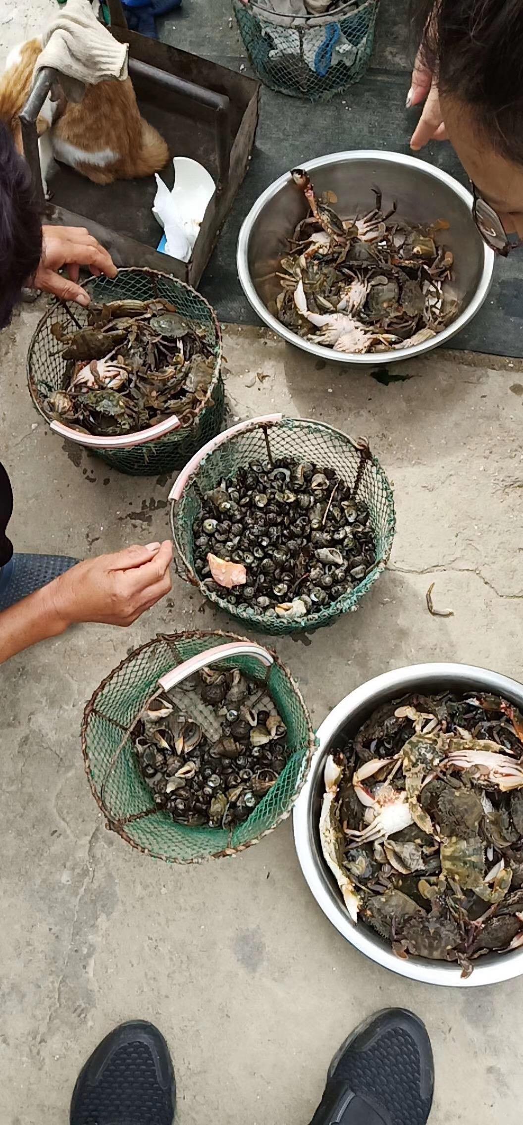 哈仙岛长会渔家