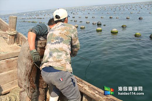 哈仙岛吉祥渔家院